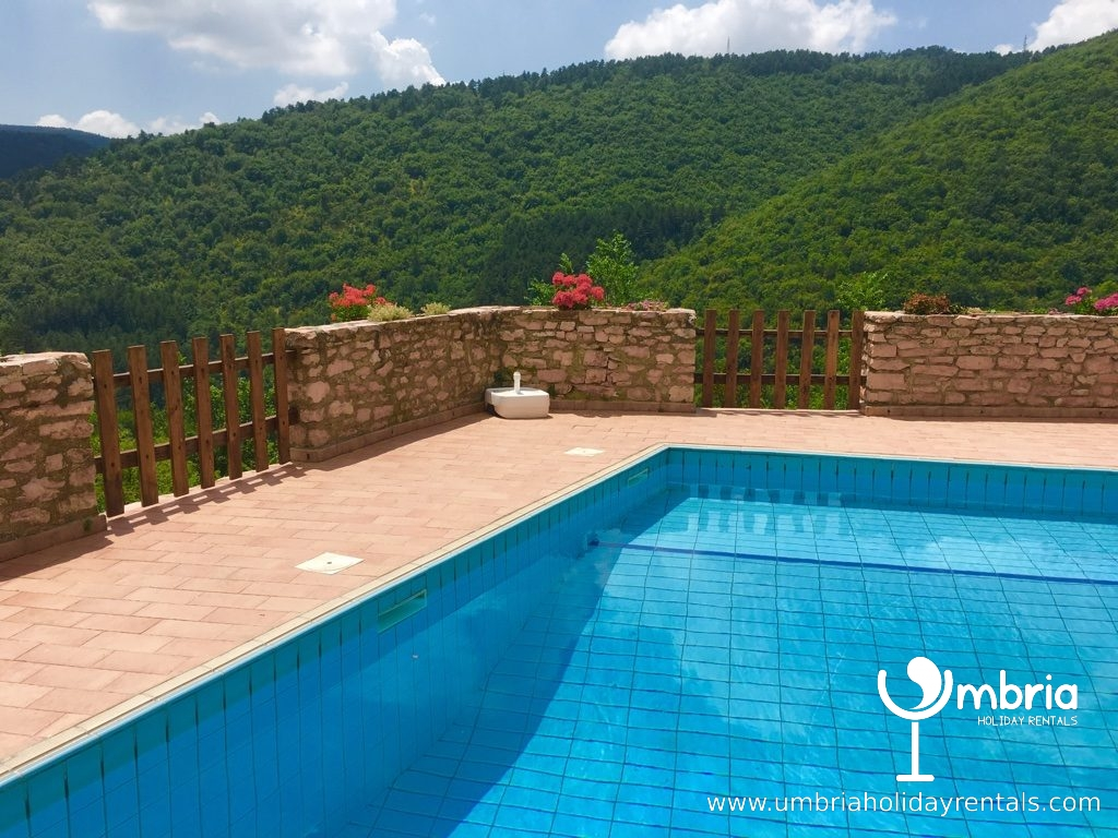 private, shared pool, below your windows