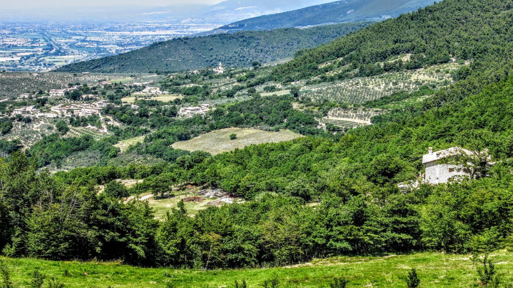 VILA MARIANNA LANDSCAPE
